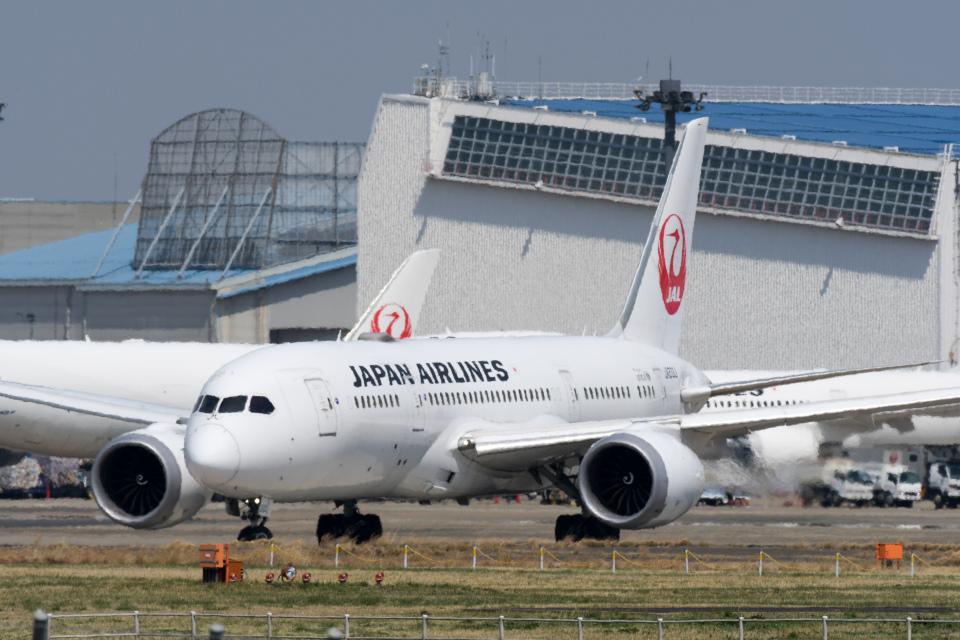panchiさんの日本航空 Boeing 787-8 Dreamliner (JA833J) 航空フォト