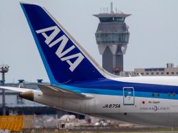 Mame @ TYOさんが、成田国際空港で撮影した全日空 787-9の航空フォト(飛行機 写真・画像)