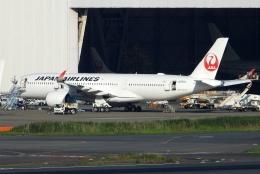 チャレンジャーさんが、羽田空港で撮影した日本航空 A350-941の航空フォト(飛行機 写真・画像)