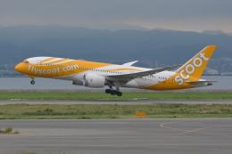 Deepさんが、関西国際空港で撮影したスクート (〜2017) 787-8 Dreamlinerの航空フォト(飛行機 写真・画像)