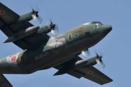 sasuke1208さんが、米子空港で撮影した航空自衛隊 C-130H Herculesの航空フォト(飛行機 写真・画像)