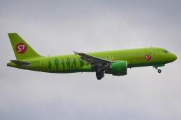 あまるめさんが、成田国際空港で撮影したS7航空 A320-214の航空フォト(飛行機 写真・画像)