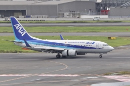 mahiちゃんさんが、羽田空港で撮影した全日空 737-781の航空フォト(飛行機 写真・画像)