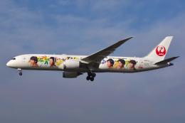 Tatsuya.Kさんが、成田国際空港で撮影した日本航空 787-9の航空フォト(飛行機 写真・画像)