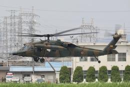 Hii82さんが、八尾空港で撮影した陸上自衛隊 UH-60JAの航空フォト(飛行機 写真・画像)
