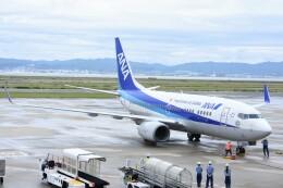 M.Tさんが、関西国際空港で撮影した全日空 737-781の航空フォト(飛行機 写真・画像)