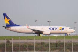 シグナス021さんが、羽田空港で撮影したスカイマーク 737-82Yの航空フォト(飛行機 写真・画像)