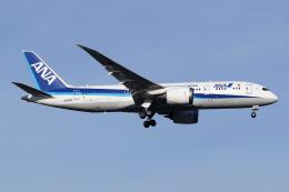Echo-Kiloさんが、新千歳空港で撮影した全日空 787-8 Dreamlinerの航空フォト(飛行機 写真・画像)