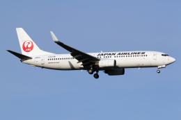 Echo-Kiloさんが、新千歳空港で撮影した日本航空 737-846の航空フォト(飛行機 写真・画像)