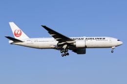 Echo-Kiloさんが、新千歳空港で撮影した日本航空 777-246/ERの航空フォト(飛行機 写真・画像)