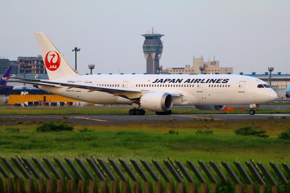 Tomo_mczさんの日本航空 Boeing 787-8 Dreamliner (JA824J) 航空フォト