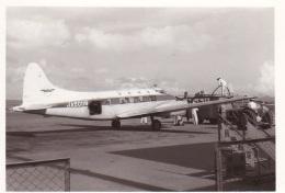 ykkys11さんが、長崎空港で撮影した長崎航空 DH.104 Dove 1Bの航空フォト(飛行機 写真・画像)