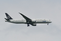 rangeroverさんが、成田国際空港で撮影した全日空 787-9の航空フォト(飛行機 写真・画像)