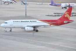 jun☆さんが、中部国際空港で撮影した深圳航空 A320-232の航空フォト(飛行機 写真・画像)