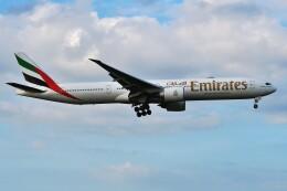 harahara555さんが、成田国際空港で撮影したエミレーツ航空 777-31H/ERの航空フォト(飛行機 写真・画像)