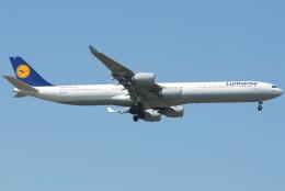 jun☆さんが、成田国際空港で撮影したルフトハンザドイツ航空 A340-642の航空フォト(飛行機 写真・画像)
