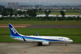 ▲®さんが、仙台空港で撮影した全日空 737-881の航空フォト(飛行機 写真・画像)