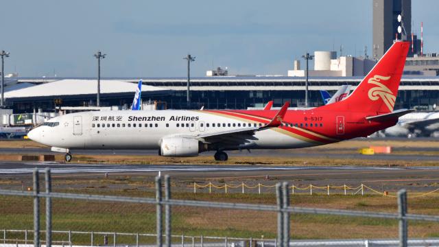 saoya_saodakeさんが、成田国際空港で撮影した深圳航空 737-86Nの航空フォト(飛行機 写真・画像)