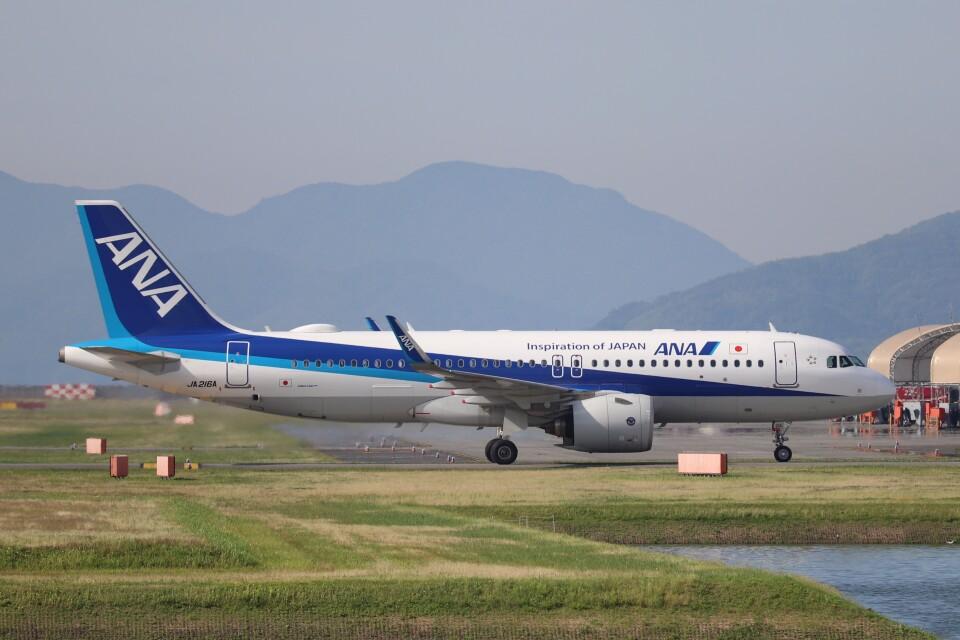 hanatomo735さんの全日空 Airbus A320neo (JA216A) 航空フォト