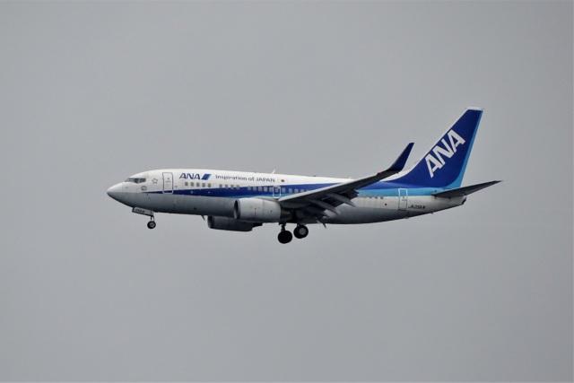 レドームさんが、羽田空港で撮影した全日空 737-781の航空フォト(飛行機 写真・画像)