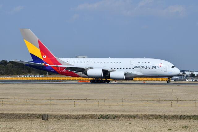 ポン太さんが、成田国際空港で撮影したアシアナ航空 A380-841の航空フォト(飛行機 写真・画像)