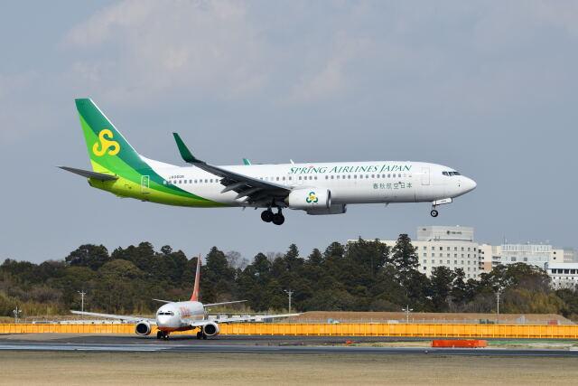 ポン太さんが、成田国際空港で撮影した春秋航空日本 737-8ALの航空フォト(飛行機 写真・画像)