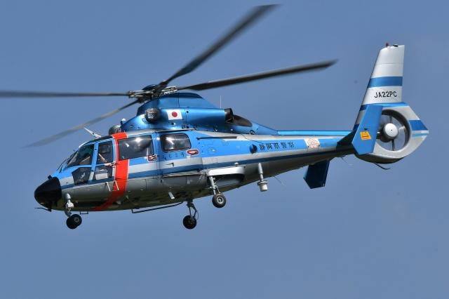 ブルーさんさんが、静岡ヘリポートで撮影した静岡県警察 AS365N1 Dauphin 2の航空フォト(飛行機 写真・画像)