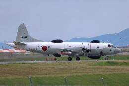 MIRAGE E.Rさんが、岩国空港で撮影した海上自衛隊 UP-3Dの航空フォト(飛行機 写真・画像)