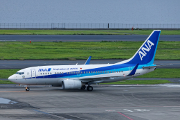 SGR RT 改さんが、羽田空港で撮影した全日空 737-781の航空フォト(飛行機 写真・画像)