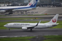 PIRORINGさんが、羽田空港で撮影した日本航空 737-846の航空フォト(飛行機 写真・画像)