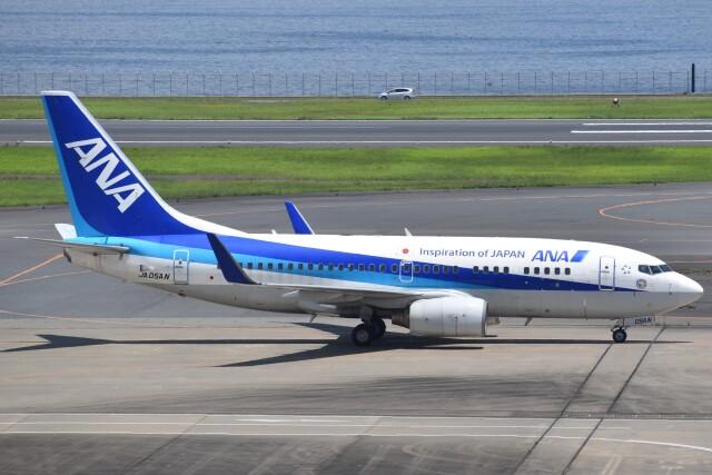 PIRORINGさんが、羽田空港で撮影した全日空 737-781の航空フォト(飛行機 写真・画像)
