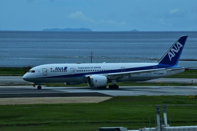 ER_b777logさんが、那覇空港で撮影した全日空 787-8 Dreamlinerの航空フォト(飛行機 写真・画像)