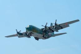 Astechnoさんが、名古屋飛行場で撮影した航空自衛隊 C-130H Herculesの航空フォト(飛行機 写真・画像)