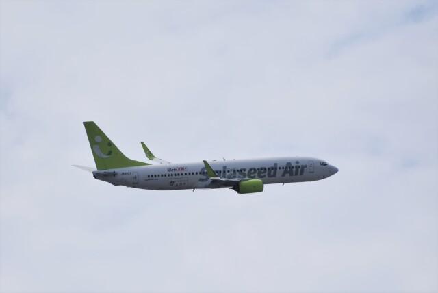 ぬま_FJHさんが、羽田空港で撮影したソラシド エア 737-81Dの航空フォト(飛行機 写真・画像)