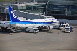 mahiちゃんさんが、羽田空港で撮影した全日空 737-881の航空フォト(飛行機 写真・画像)