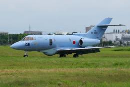 yabyanさんが、浜松基地で撮影した航空自衛隊 U-125A(Hawker 800)の航空フォト(飛行機 写真・画像)