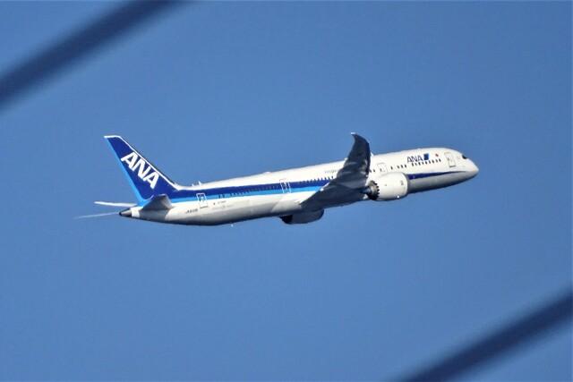 レドームさんが、羽田空港で撮影した全日空 787-9の航空フォト(飛行機 写真・画像)