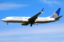 Tomo_mczさんが、成田国際空港で撮影したユナイテッド航空 737-824の航空フォト(飛行機 写真・画像)