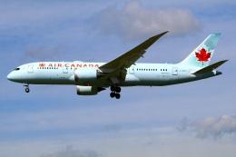 Tomo_mczさんが、成田国際空港で撮影したエア・カナダ 787-8 Dreamlinerの航空フォト(飛行機 写真・画像)