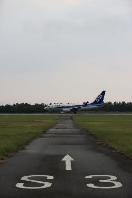 516105さんが、鳥取空港で撮影した全日空 737-781の航空フォト(飛行機 写真・画像)