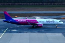 S.Hayashiさんが、ウィーン国際空港で撮影したウィズ・エア A321-231の航空フォト(飛行機 写真・画像)