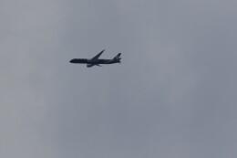flyskyさんが、成田国際空港で撮影したニュージーランド航空 787-9の航空フォト(飛行機 写真・画像)