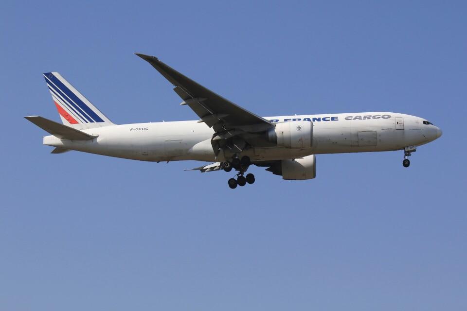 メンチカツさんのエールフランス航空 Boeing 777-200 (F-GUOC) 航空フォト