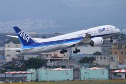 航空フォト:JA816A 全日空 787-8 Dreamliner
