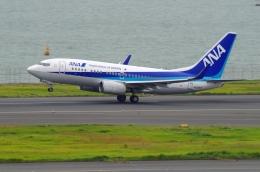 tasho0525さんが、羽田空港で撮影した全日空 737-781の航空フォト(飛行機 写真・画像)