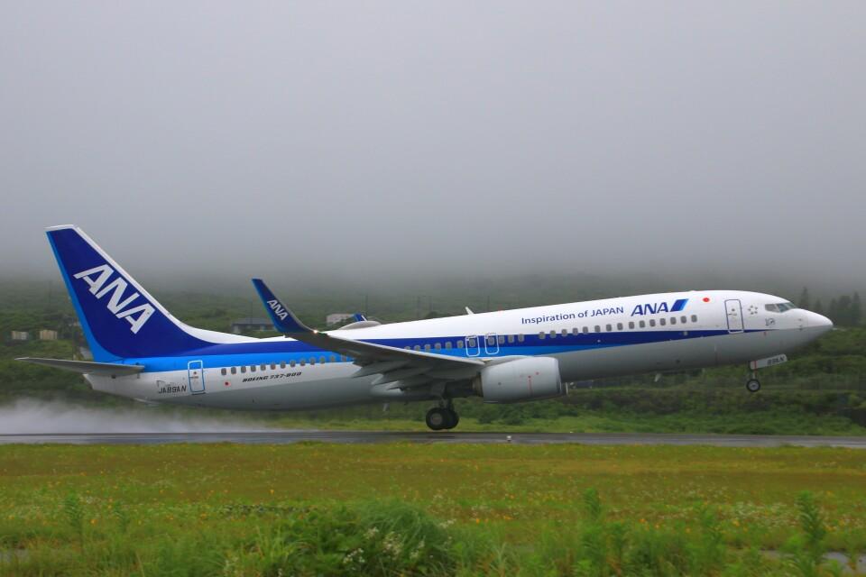 じーのさんさんの全日空 Boeing 737-800 (JA89AN) 航空フォト