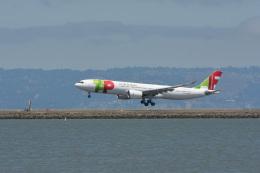 小弦さんが、サンフランシスコ国際空港で撮影したTAPポルトガル航空 A330-941の航空フォト(飛行機 写真・画像)