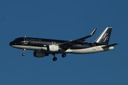 すど。けん。さんが、羽田空港で撮影したスターフライヤー A320-214の航空フォト(飛行機 写真・画像)