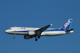 すど。けん。さんが、羽田空港で撮影した全日空 A320-211の航空フォト(飛行機 写真・画像)