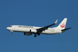 すど。けん。さんが、羽田空港で撮影した日本航空 737-846の航空フォト(飛行機 写真・画像)